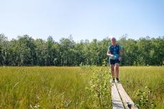 Polärskog Trail