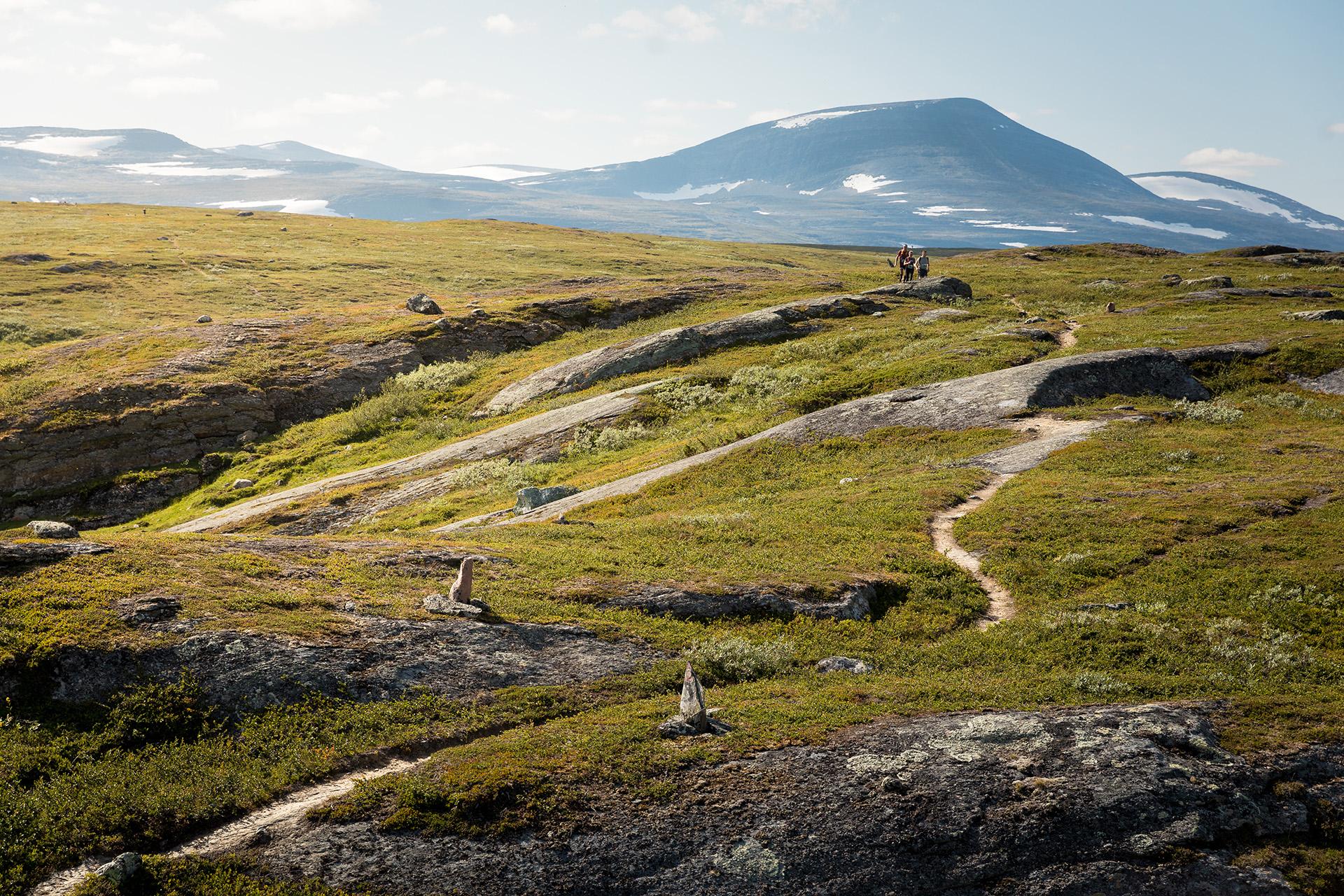 Trailrun Lapland