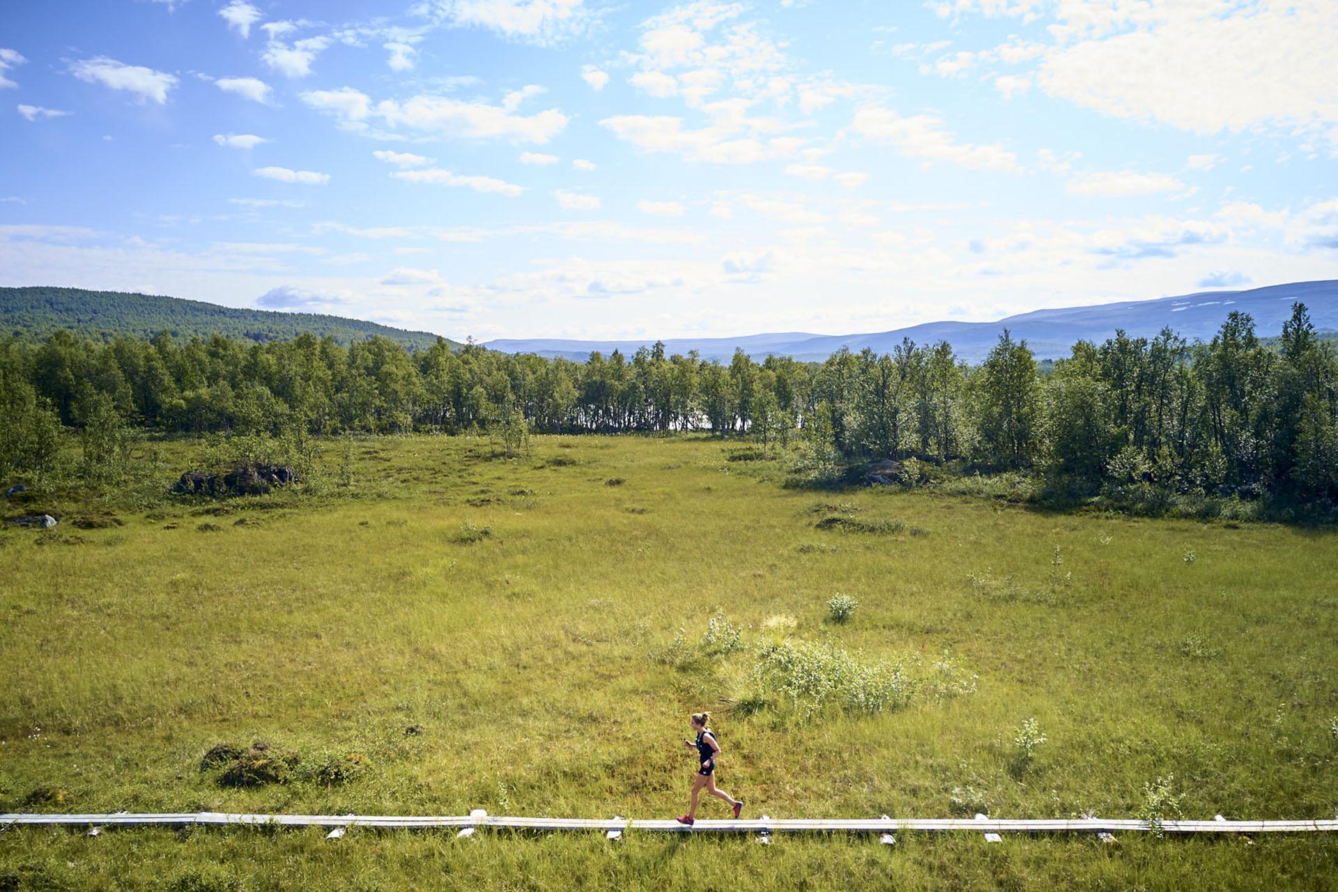 Terugkijken op trails